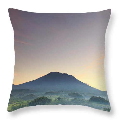 Scenics Throw Pillow featuring the photograph Indonesia, Bali, Rice Fields And by Michele Falzone