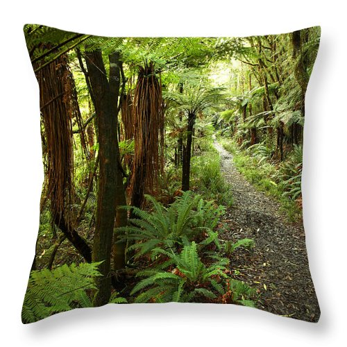 Bush Throw Pillow featuring the photograph Forest Trail by Les Cunliffe