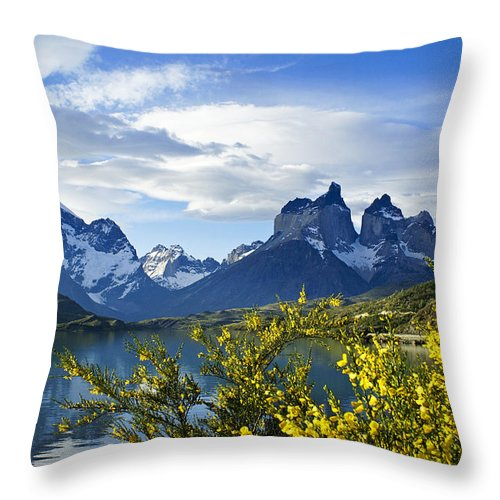 Patagonia Throw Pillow featuring the photograph Springtime In Torres Del Paine by Michele Burgess