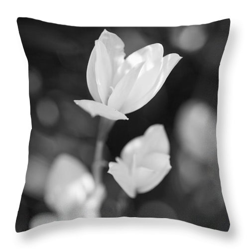 Flowers Throw Pillow featuring the photograph Garden Flora by Thomas Levine