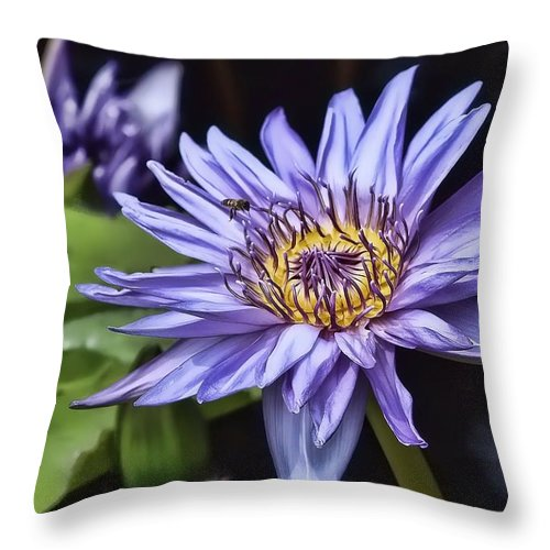 Water Lily Throw Pillow featuring the photograph Water Lily by Joyce Baldassarre