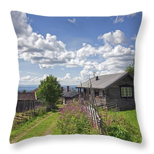 Fryksas Throw Pillow featuring the photograph 130201p099 by Arterra Picture Library