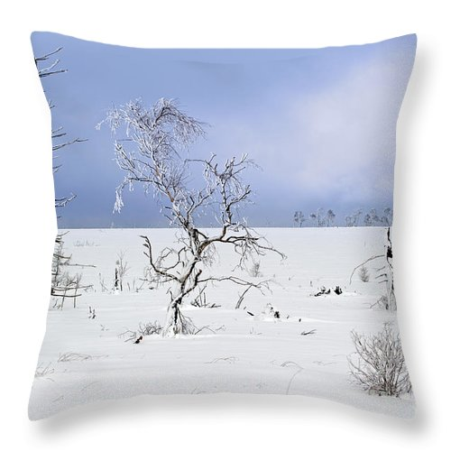High Fens Throw Pillow featuring the photograph 130201p330 by Arterra Picture Library