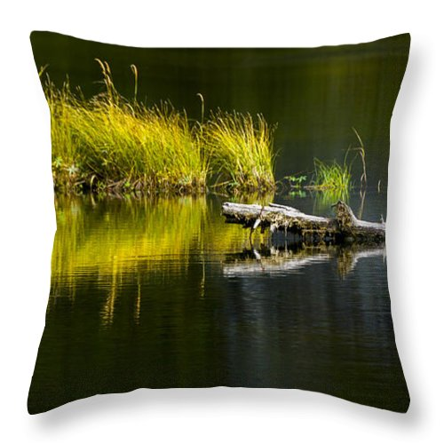 Priest Lake Throw Pillow featuring the photograph 131005b-029 Forest Pond 2 by Albert Seger