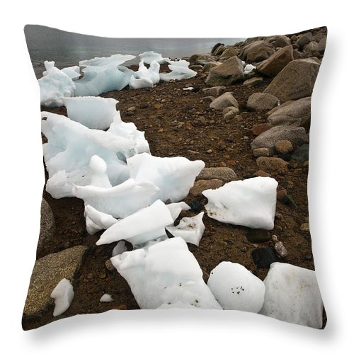 Antarctica Throw Pillow featuring the photograph Antarctica by John Shaw