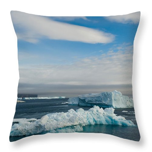 Icebergs Throw Pillow featuring the photograph Iceberg by John Shaw