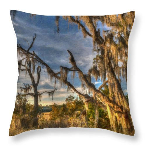 Lowcountry Throw Pillow featuring the digital art Winter Marsh by Dale Powell