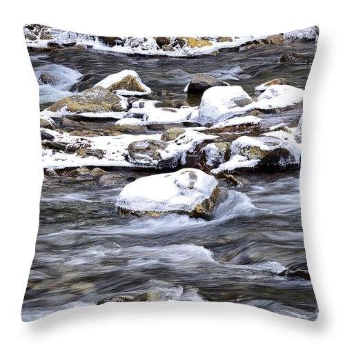 Williams River Throw Pillow featuring the photograph Winter Along Williams River by Thomas R Fletcher