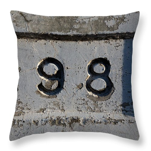 1981 Throw Pillow featuring the photograph 1981 by John Daly