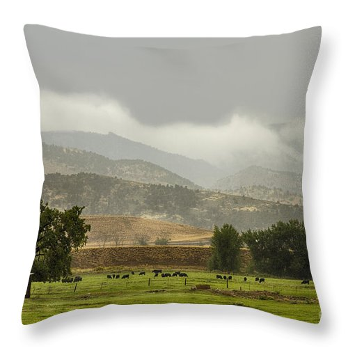 Rain Throw Pillow featuring the photograph 1st Day Of Rain Great Colorado Flood by James BO Insogna