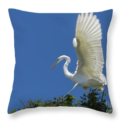 Egret Throw Pillow featuring the photograph 1st Flight Attempt by Jennie Breeze