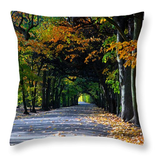 Fall Throw Pillow featuring the photograph Alley With Falling Leaves In Fall Park by Michal Bednarek