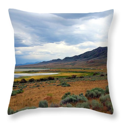 Landscape Throw Pillow featuring the photograph Antelope Island by Jemmy Archer