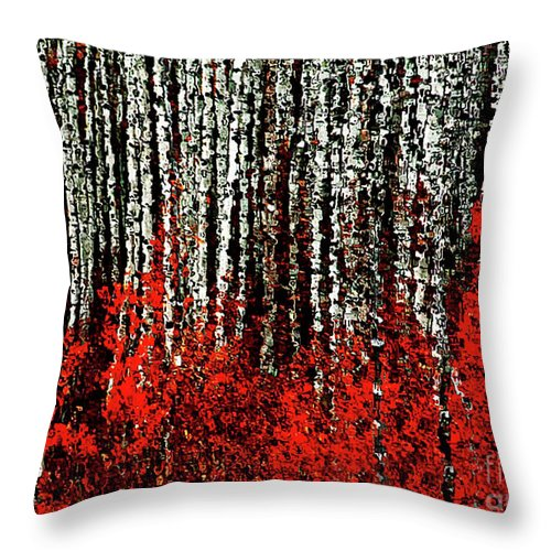 Aspen Forest Throw Pillow featuring the photograph Aspen Forest by Barbara D Richards