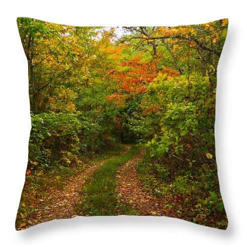 Road Throw Pillow featuring the photograph Autumn Road by Nick Kirby