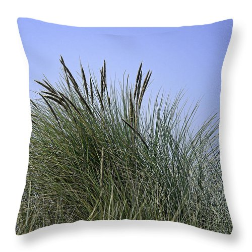 Beach Throw Pillow featuring the photograph Beach Grass by Betty Depee
