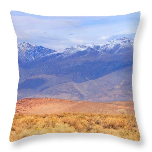 Sky Throw Pillow featuring the photograph Beautiful Desert by Marilyn Diaz