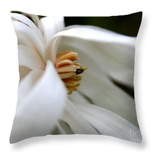 Flower Throw Pillow featuring the photograph Blown Away by Neal Eslinger