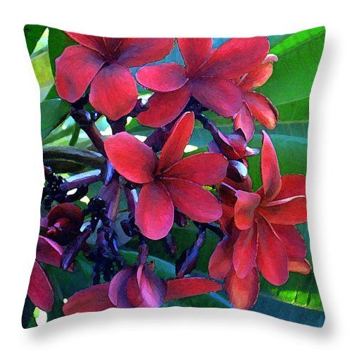 Hawaii Throw Pillow featuring the photograph Burgundy Plumeria by James Temple