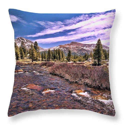 Canadian Rockies Stream Throw Pillow featuring the photograph Canadian Rockies Stream by Allen Beatty