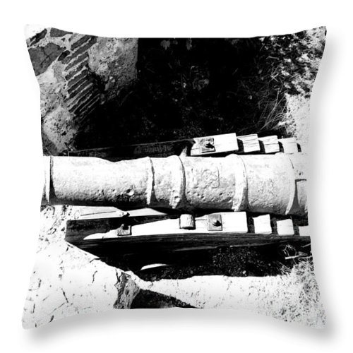 Cannon Throw Pillow featuring the photograph Cannon by James Markey