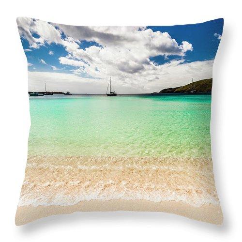 Tropical Tree Throw Pillow featuring the photograph Caribbean Beach by Guvendemir