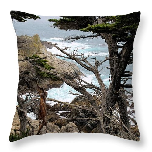 Throw Pillow featuring the photograph Coast Of California by G Berry