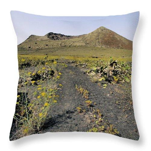 Volcano Throw Pillow featuring the photograph Corona Volcano On Lanzarote by Karol Kozlowski