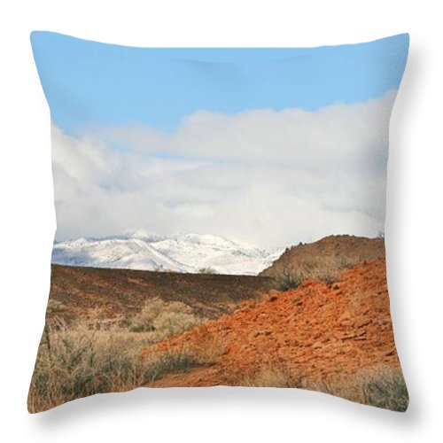 Sky Throw Pillow featuring the photograph Desert Delight by Marilyn Diaz