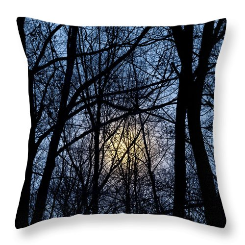 Winter Throw Pillow featuring the photograph Frosted Winter Moon by Alan L Graham