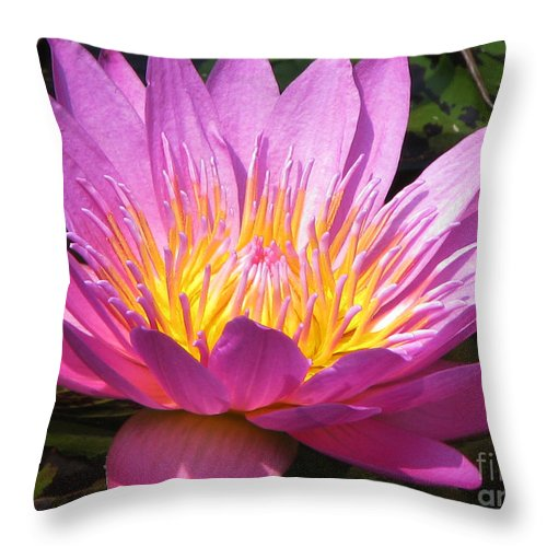 Lilly Throw Pillow featuring the photograph It by Amanda Barcon