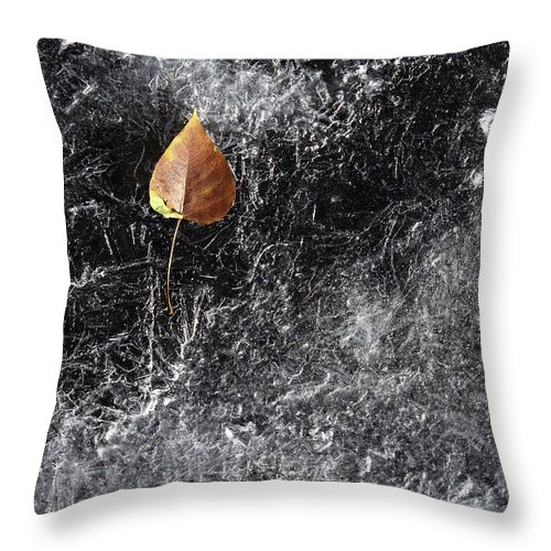Ice Throw Pillow featuring the photograph Leaf On Ice by J L Woody Wooden