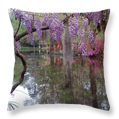 Wisteria Throw Pillow featuring the photograph Magnolia Plantation Gardens Series II by Suzanne Gaff