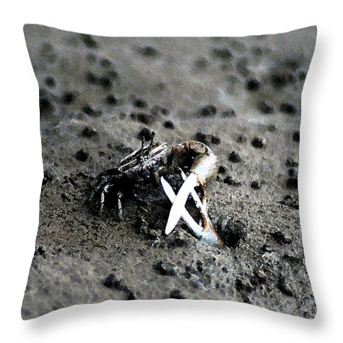 Animals Throw Pillow featuring the photograph Mangrove Land Crab by Ali Mohamad