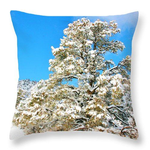 Sky Throw Pillow featuring the photograph Merry Christmas by Marilyn Diaz