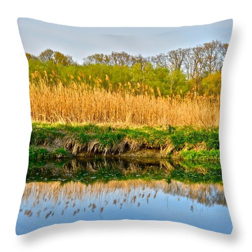Image Throw Pillow featuring the photograph Mirror Image by Frozen in Time Fine Art Photography