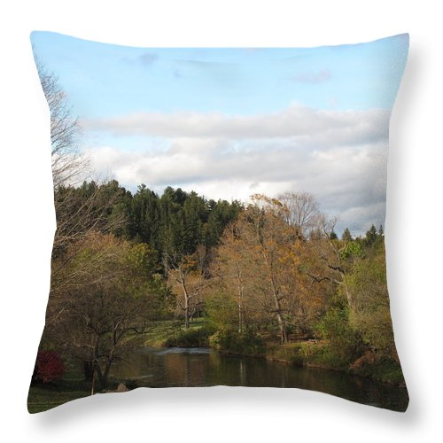 Foliage Throw Pillow featuring the photograph New England Autumn One by Barbara McDevitt