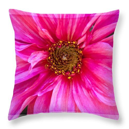 Dahlia Throw Pillow featuring the photograph Oh My by Alice Gipson