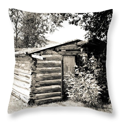Cabin Throw Pillow featuring the photograph Old Log Homestead by Athena Mckinzie
