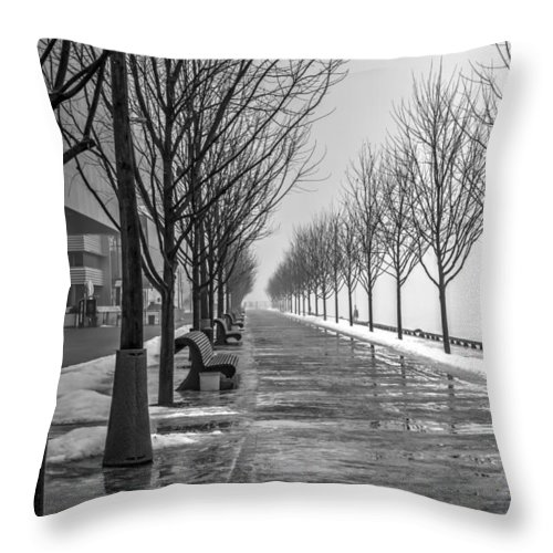 Landscape Throw Pillow featuring the photograph Path Through Fog by Nicky Jameson