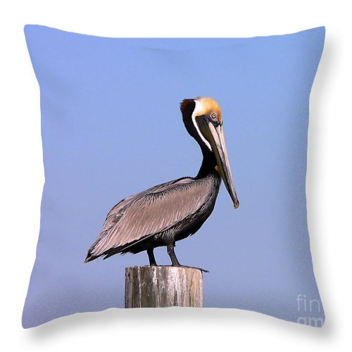Pelican Throw Pillow featuring the photograph Pelican Perch by Al Powell Photography USA