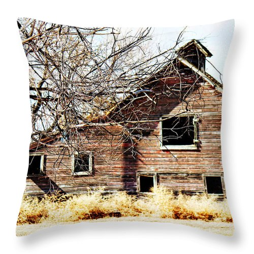 Old Barn Throw Pillow featuring the photograph Petite Barn by Sylvia Thornton