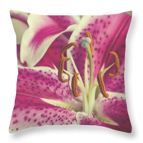 Daylily Throw Pillow featuring the photograph Pink Daylily by Jim And Emily Bush