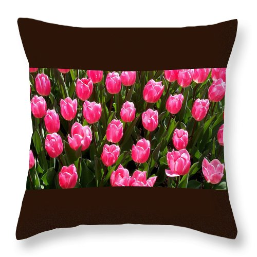 Flower Throw Pillow featuring the photograph Pink Tulips by Glenn Aker