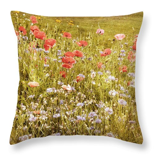 Nature Throw Pillow featuring the photograph Poppies by Jessica Jenney