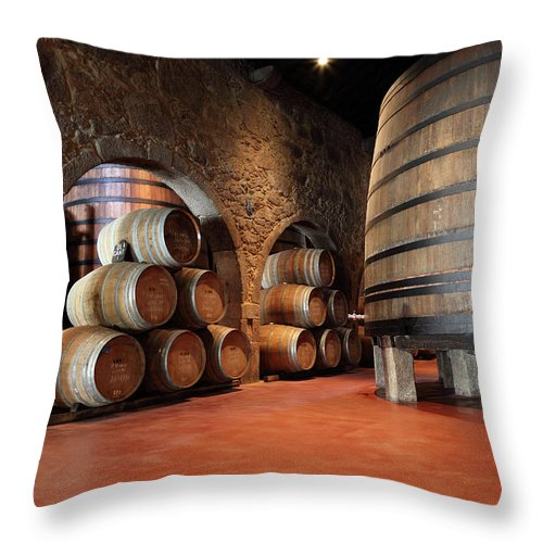 Fermenting Throw Pillow featuring the photograph Porto Wine Cellar by Vuk8691