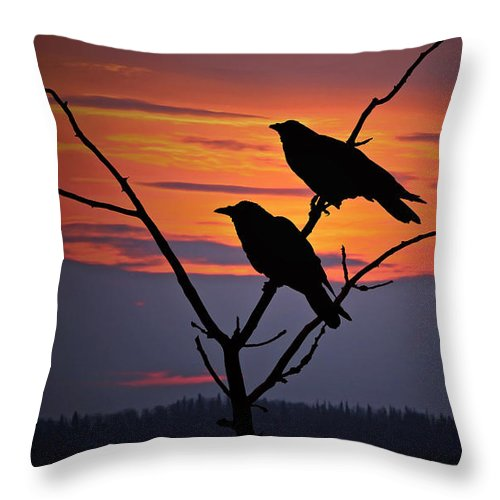 Raven Throw Pillow featuring the photograph 2 Ravens by Ron Day