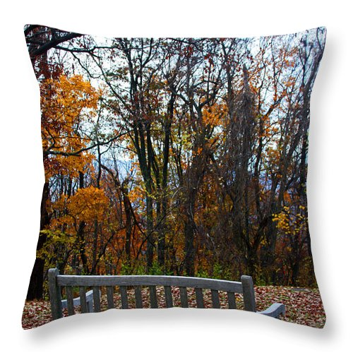 Autumn Throw Pillow featuring the photograph Rest Stop by Carolyn Stagger Cokley