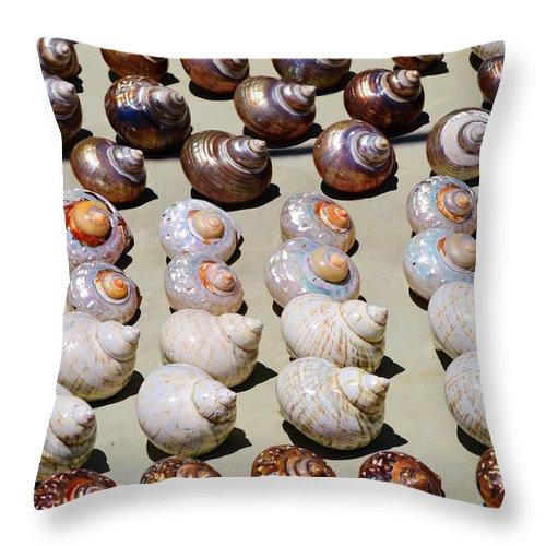 Close Up; Beautiful; Sea Shells; Spiral; White; Orange; Brown; Marine Mollusks; Beach; Sand; Atlantic Ocean; South Africa; Exoskeleton; Invertebrate; Background; Decorative; Detail; Throw Pillow featuring the photograph Sea Shells by Werner Lehmann