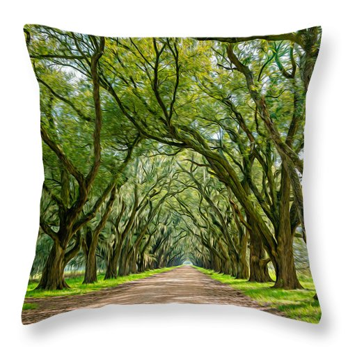 Evergreen Plantation Throw Pillow featuring the photograph Southern Journey by Steve Harrington